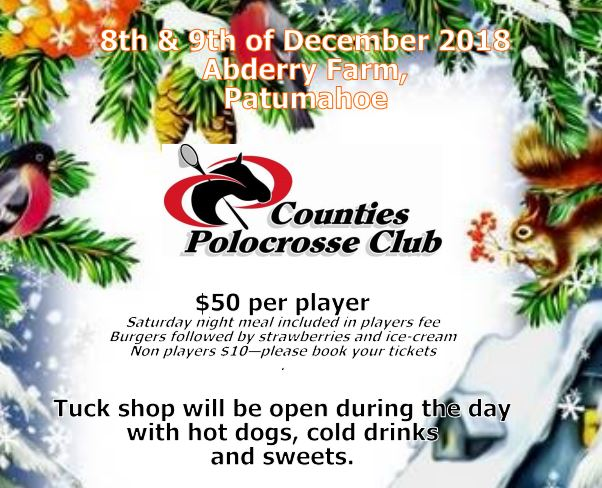image for Counties Polocrosse Carnival